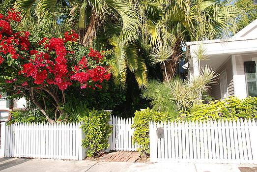 Susanne Van Hulst - Key West Houses and Gardens
