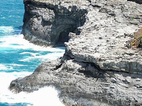 Kilauea Lighthouse area Kauai by Tabatha Knox