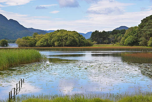 Jane McIlroy - Killarney Lakeside Scene - Kerry - Ireland