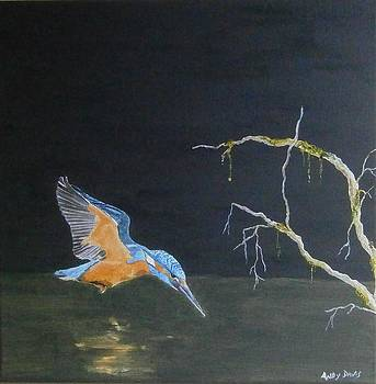 Kingfisher finally finished by Andy Davis
