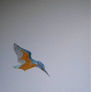 Kingfisher WIP by Andy Davis