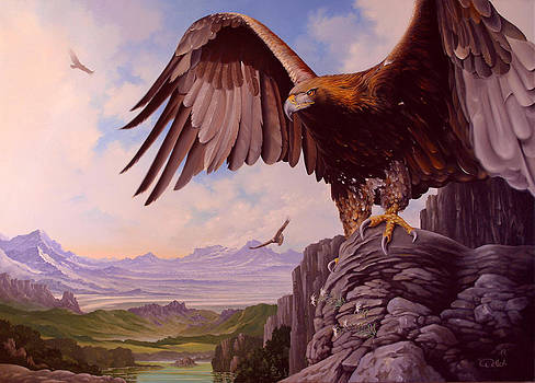 Kings of the Sky by Hans Doller