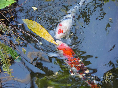 Kissin' Koi by HEVi FineArt