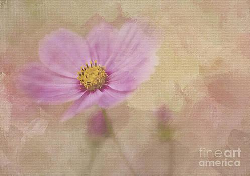 Kissing Me Softly by Linda Blair