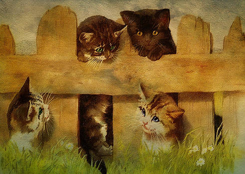 Pamela Phelps - Kittens at the Fence