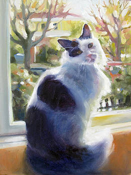 Kitty at Window by Renee Peterson
