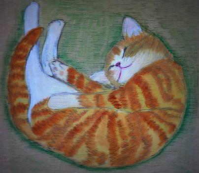 Kitty by GuoJun Pan