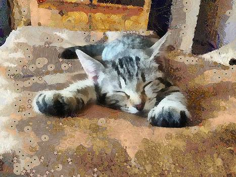 Kitty Nap by Carol Sullivan