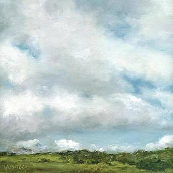 Stacy Vosberg - Kohala Hills Big Sky
