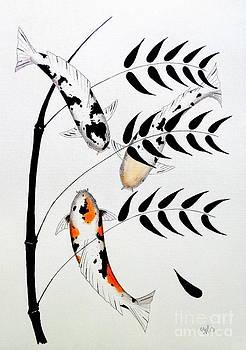 Koi Bamboo Bekko Hikari Utsuri and Utsuri Mono by Gordon Lavender