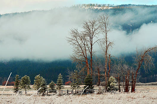 Kootenai Frost by Annie Pflueger