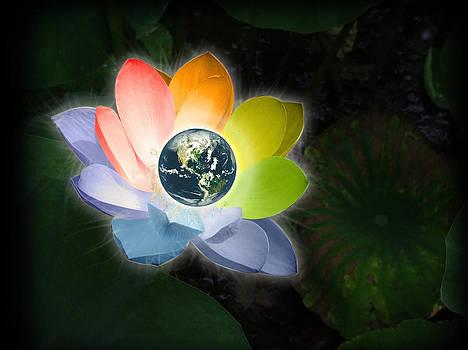 The Peace  by Barbara Ki