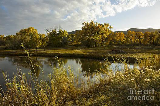 Jerry McElroy - La Boca Ranch Pond