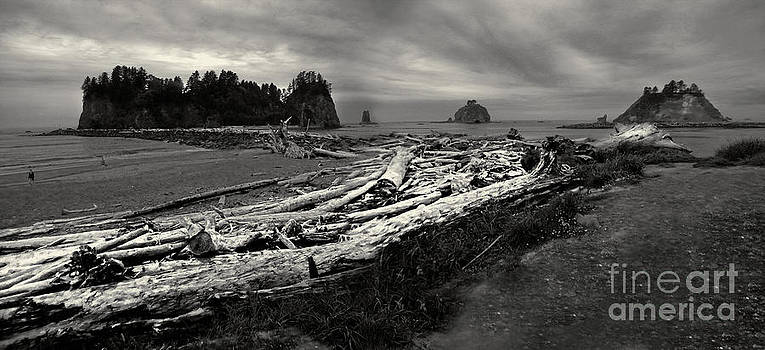 Gregory Dyer - La Push - Washington