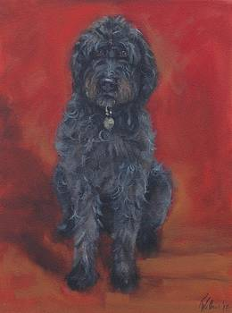 Labradoodle by Pet Whimsy  Portraits
