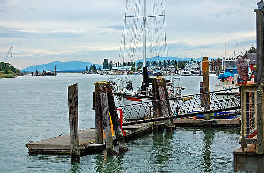 LaConnor Harbor by Randall Templeton