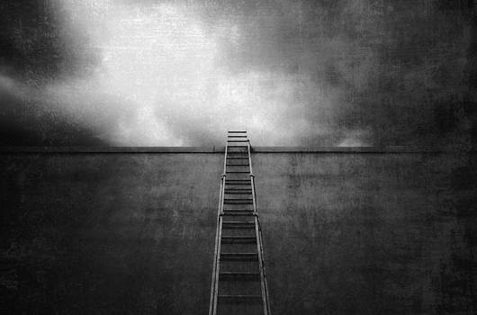 Ladder against the wall by Marlene Ford