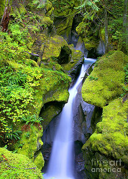 Ladder Creek Falls by Kari Marttila