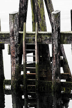 Ladder to the Depths by Stephanie Haertling