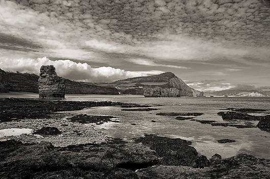 Ladram Bay at low tide by Pete Hemington