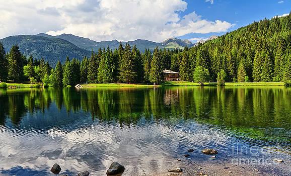 Lago dei Caprioli - Roe deer lake by Antonio Scarpi