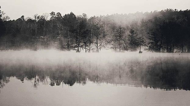 Lake at Dawn by Jenny Albritton