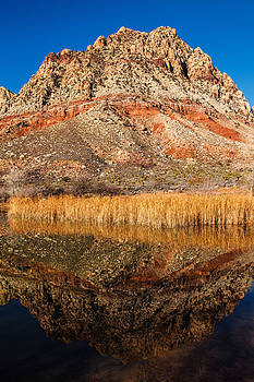 Lake Harriett Reflection   by James Marvin Phelps