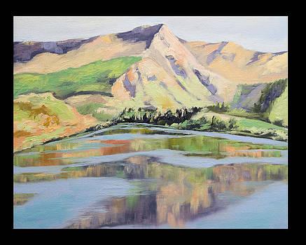 Lake Hayes Reflections by Linda Riesenberg Fisler