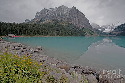 Lake Louise Glory  by Judy Grant