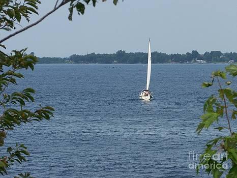 Lake Ontario Sailing by Kevin Croitz