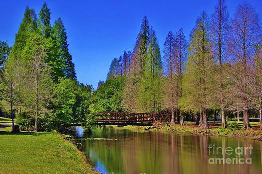 Lake Parker by Wendy Ohlman