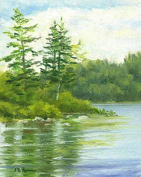 Lake Shore by Elaine Farmer