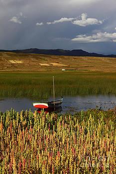 James Brunker - Lake Titicaca and Quinoa Field