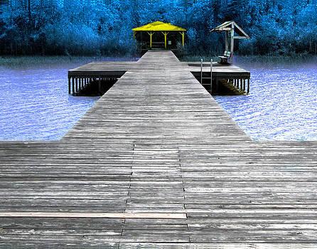 Lake Waccamaw Deck  by Joseph Tese