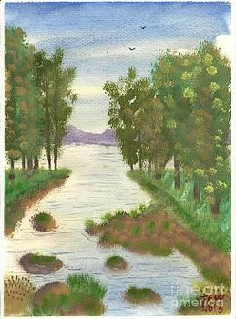 Lakeland Stream by John Williams