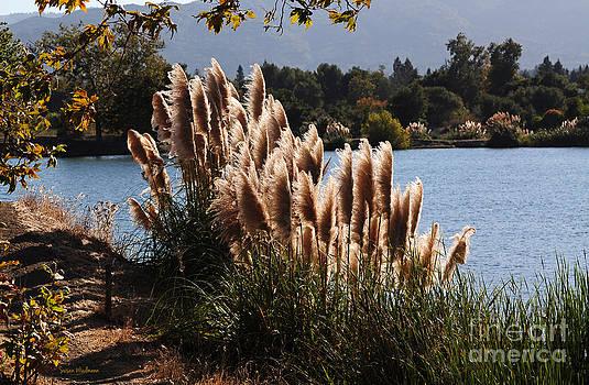 Susan Wiedmann - Lakeside in Early Autumn