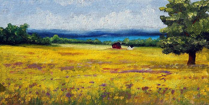 Lakeside Mustard Fields by Meaghan Troup
