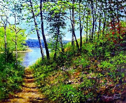 Lakeside Path by Wayne Fair