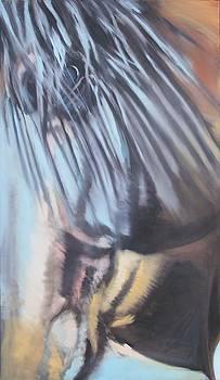 Lakota profile by Steve Messenger