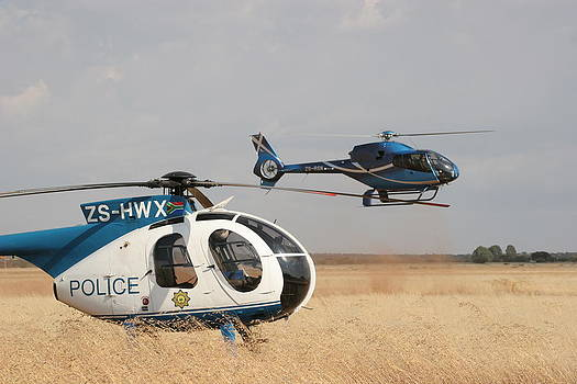 Landing on a Wing by Paul Job