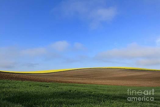 BERNARD JAUBERT - Landscape in France