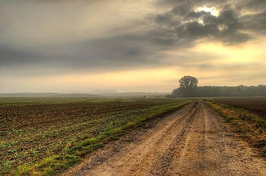 Landscape in Mecklenburg germany by Tomas Menzel