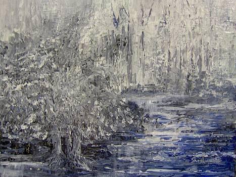 Shesh Tantry - Landscape in Winter