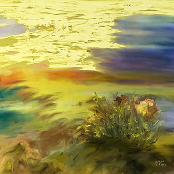 Shesh Tantry - Landscape no. 155