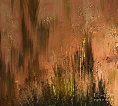Shesh Tantry - Landscape no. 225
