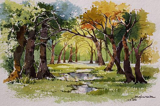 Landscape by Shajeersainu Sainu