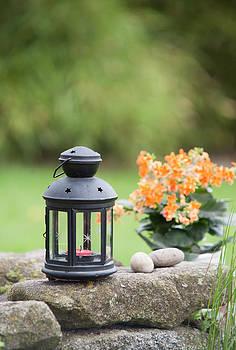 Lantern by David Heger