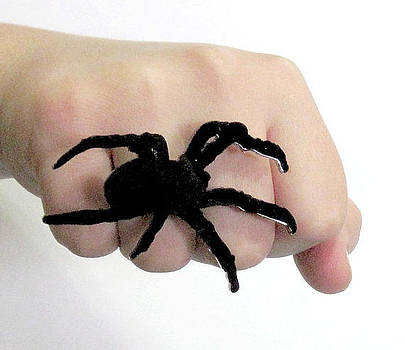 Large Spider Ring by Rony Bank