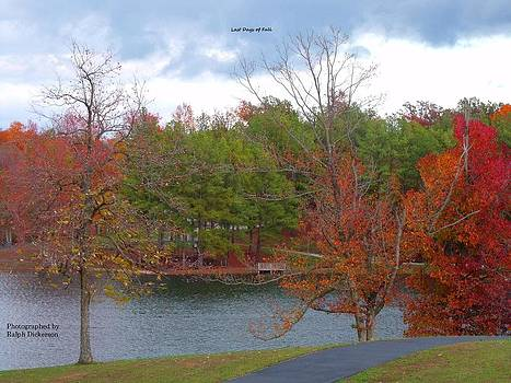 Last Days of Fall by Ralph Dickerson