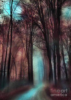 Late autumn moon winter on the way by Gina Signore
